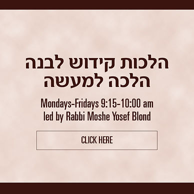 rabbi-blond.jpg