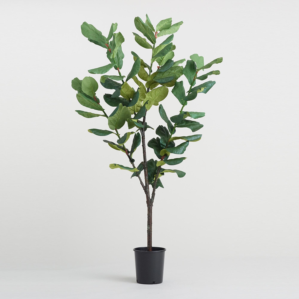 fake tree, indoor plants, fig tree, indoor decoration, green space