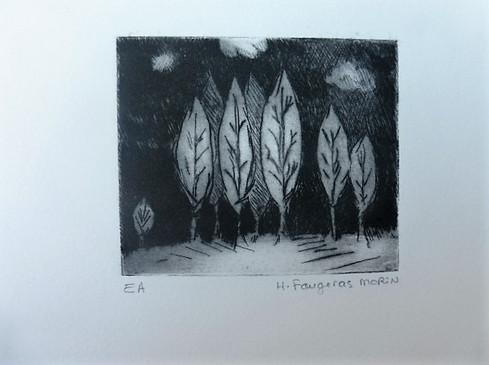 du côté des arbres 4