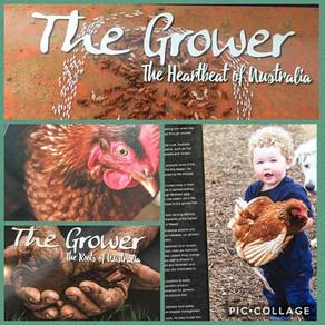 The Grower - The Heartbeat of Australia by Al Mabin