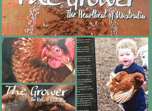 The Grower - The Heartbeat of Australia by Al Mabin