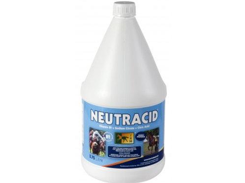 Нейтрацид (3,75 л)