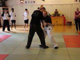 Die Rolle Der Kampfsportarten,San-Shou, Sanda (Freikampf) in der Arbeit mit Jugendlichen.