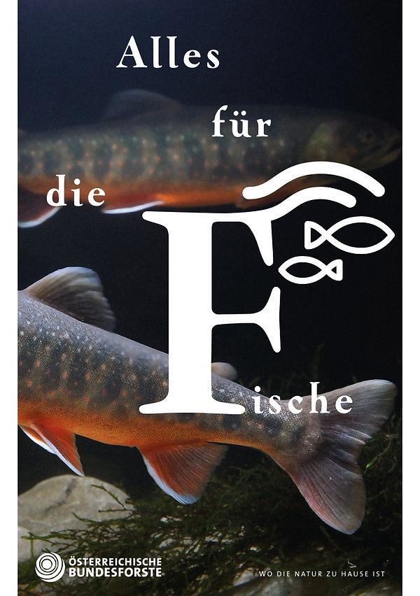 OeBf_Plakat_Fische.jpg