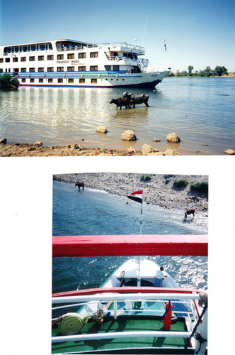Egypt - The Nile - in style (family crui