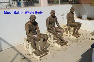 SY Mud-Bat whole Body.jpg