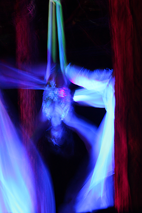 Guitarfish - aerials VI.png