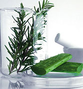 SY - Aloe Ingredient Pic.JPG