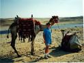 Egypt - Giza - Dave & Camels.JPG