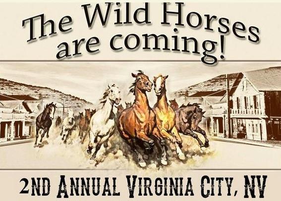 haay 2nd Annual Wild Horse Faire.jpeg