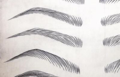 Permenant Eyebrow sketches.jpg