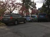 205 Park Lane - 5 15 2020 - more cars in