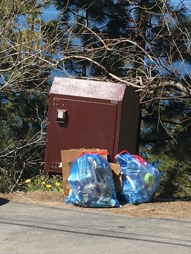 205 Park Lane - 4 21 2020 -garbage overf