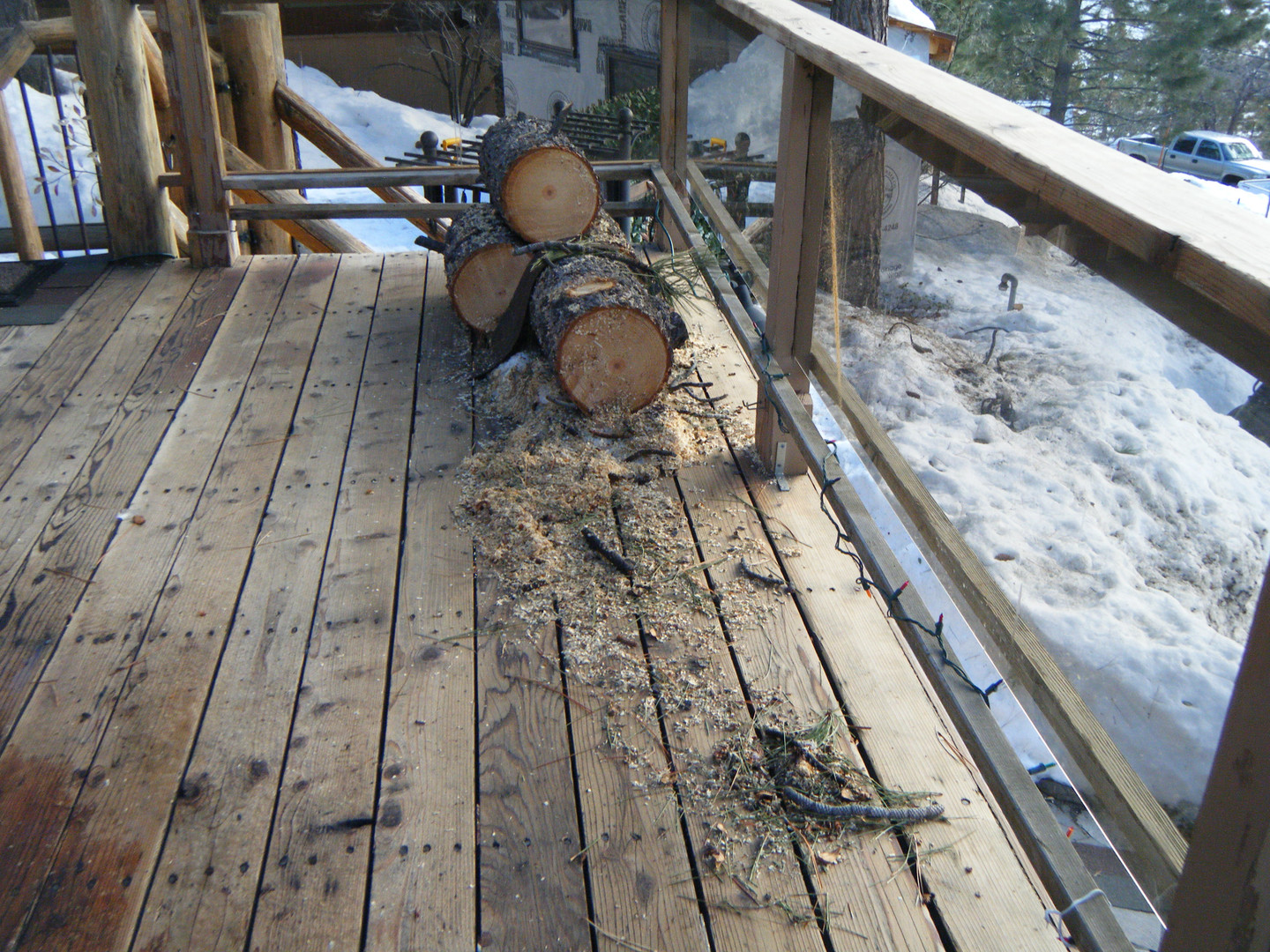 Tree Rounds from Limb on Cabin - cut up March 2017