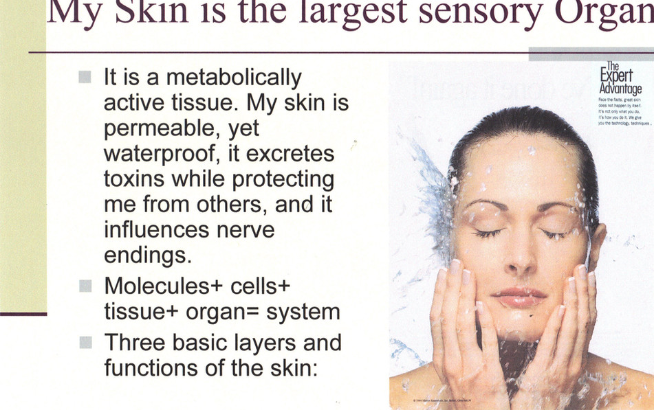 SY - Presentation -  EE - My Skin Sensor