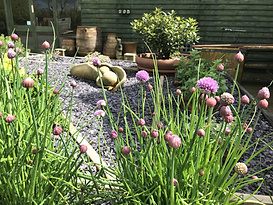 Chives and herbs to help yourself to  ac