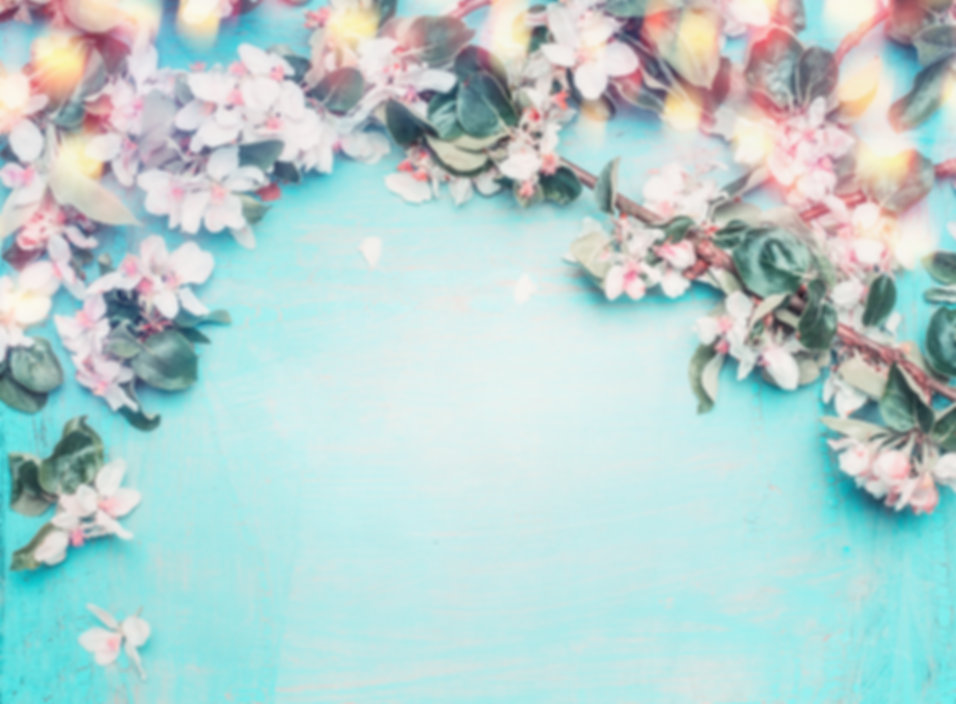 Beautiful spring blossom background with