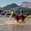 Thumbnail: RUFFWEAR - Veste de Flottaison Red Sumac *NOUVEAU MODÈLE*