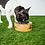 Thumbnail: GF PET - Bol en bois de manguier - 3 grandeurs disponibles