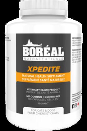 BORÉAL - Supplément Santé Naturelle Xpedite pour Chiens&Chats - 120 capsules