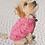 Thumbnail: DOGGIE-Q - Tricot Rose pour petits chiens - Convient aussi aux chats