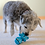 Thumbnail: CYCLE DOG - Jouet Intéractif Hippopotame