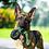 Thumbnail: PET QWERKS - Pneu X-Tire Ball Tug 'n' Toss