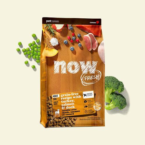 PETCUREAN NOW FRESH - Sans Grains ADULTE Dinde/Saumon/Canard