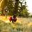 Thumbnail: RUFFWEAR  - Sac à Dos Palisades - Red Currant