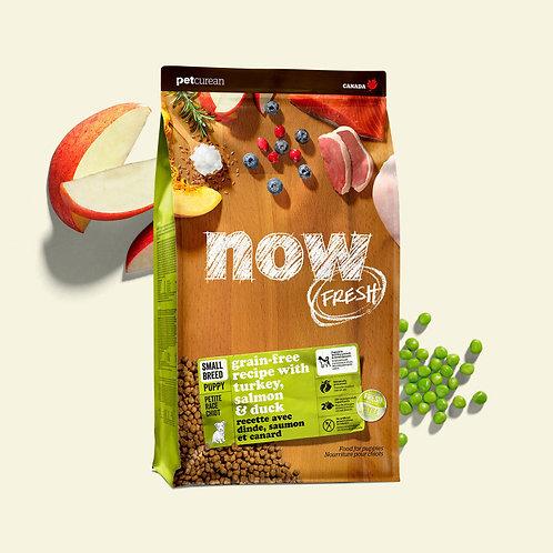 PETCUREAN NOW FRESH - Sans Grains CHIOT Petite Race Dinde/Saumon/Canard