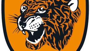 Opposition Profile: Hull City