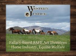WJ Safe Act