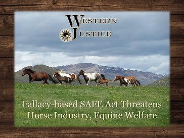 WJ Safe Act.jpg
