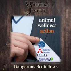WJ Dangerous Bedfellow