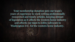 WJ Membership Donation