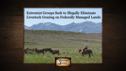 Threats To Illegally Eliminate Grazing Rights On Federally Managed Lands