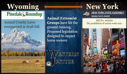Wyoming and NY