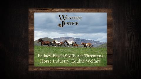 The Safe Act Fallacy