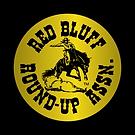 RBRUA_Logo_GoldBug copy.png