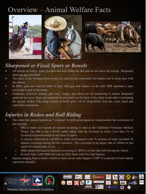 Animal Welfare In Rodeo Facts