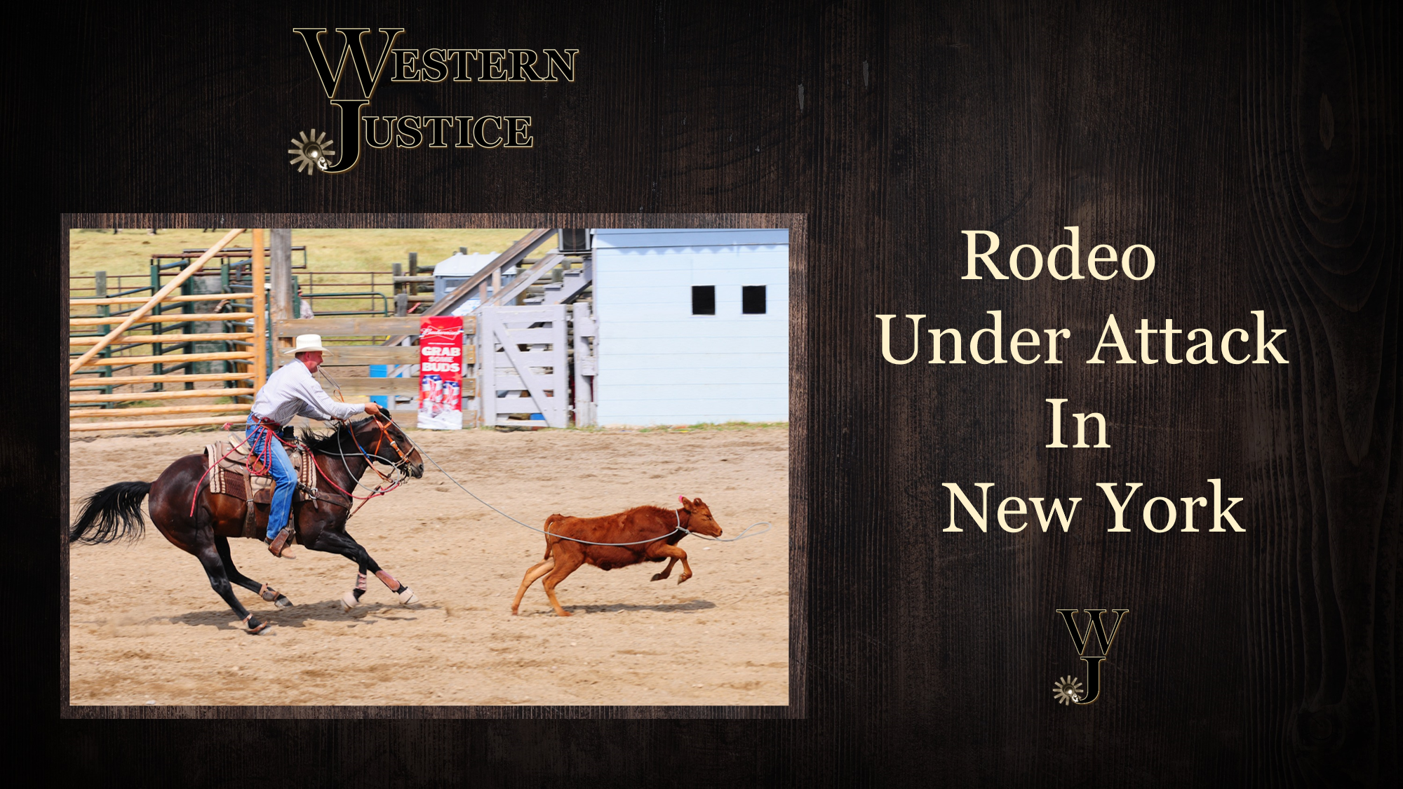 Rodeo Under Attack In New York