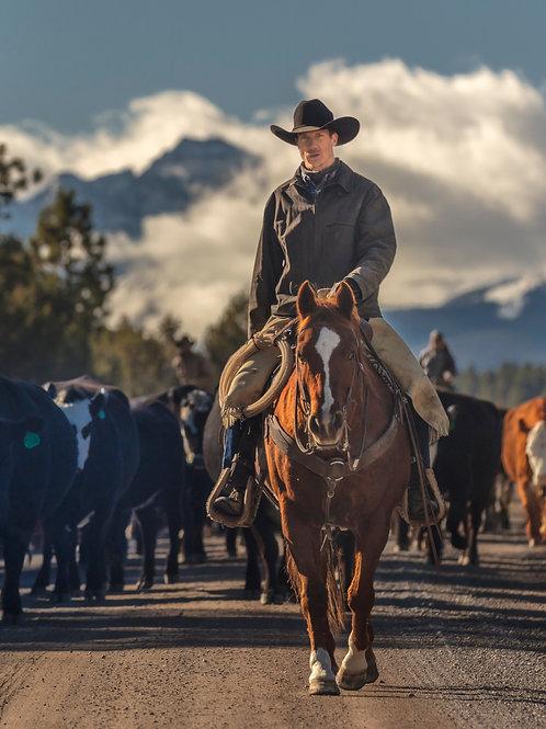 Herd Boss Membership