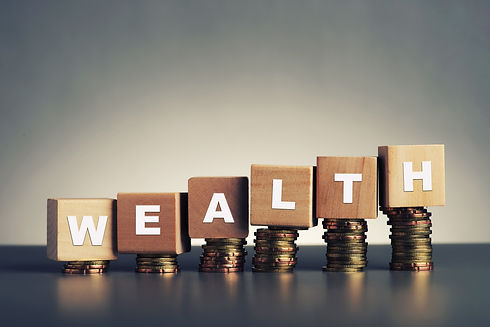 wealth text written on wooden block with