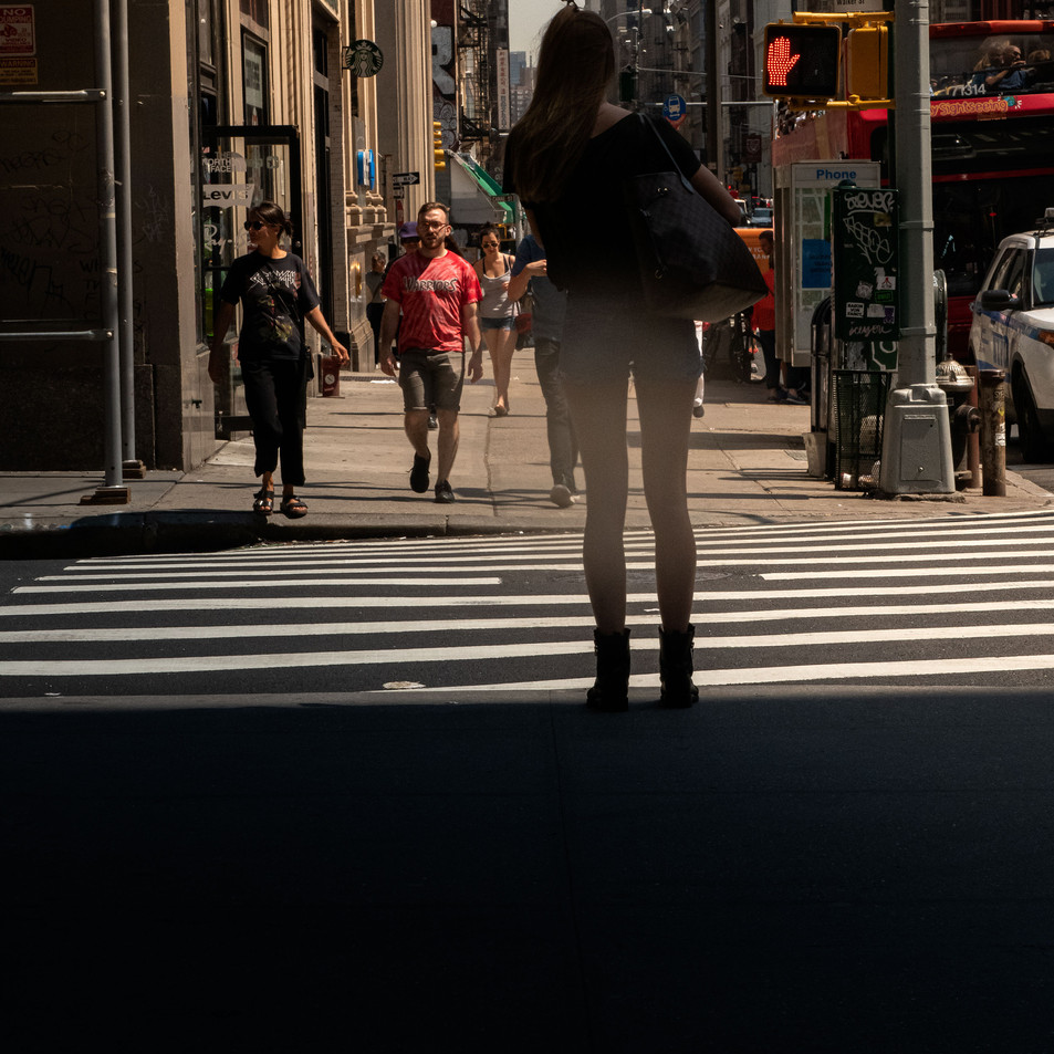 GIRL AND ZEBRA New York Intimate Limited Edition Photography