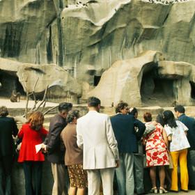 Le Zoo Laurent Condominas Edition Limitée 21 ex.