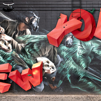 Bears in city of NY