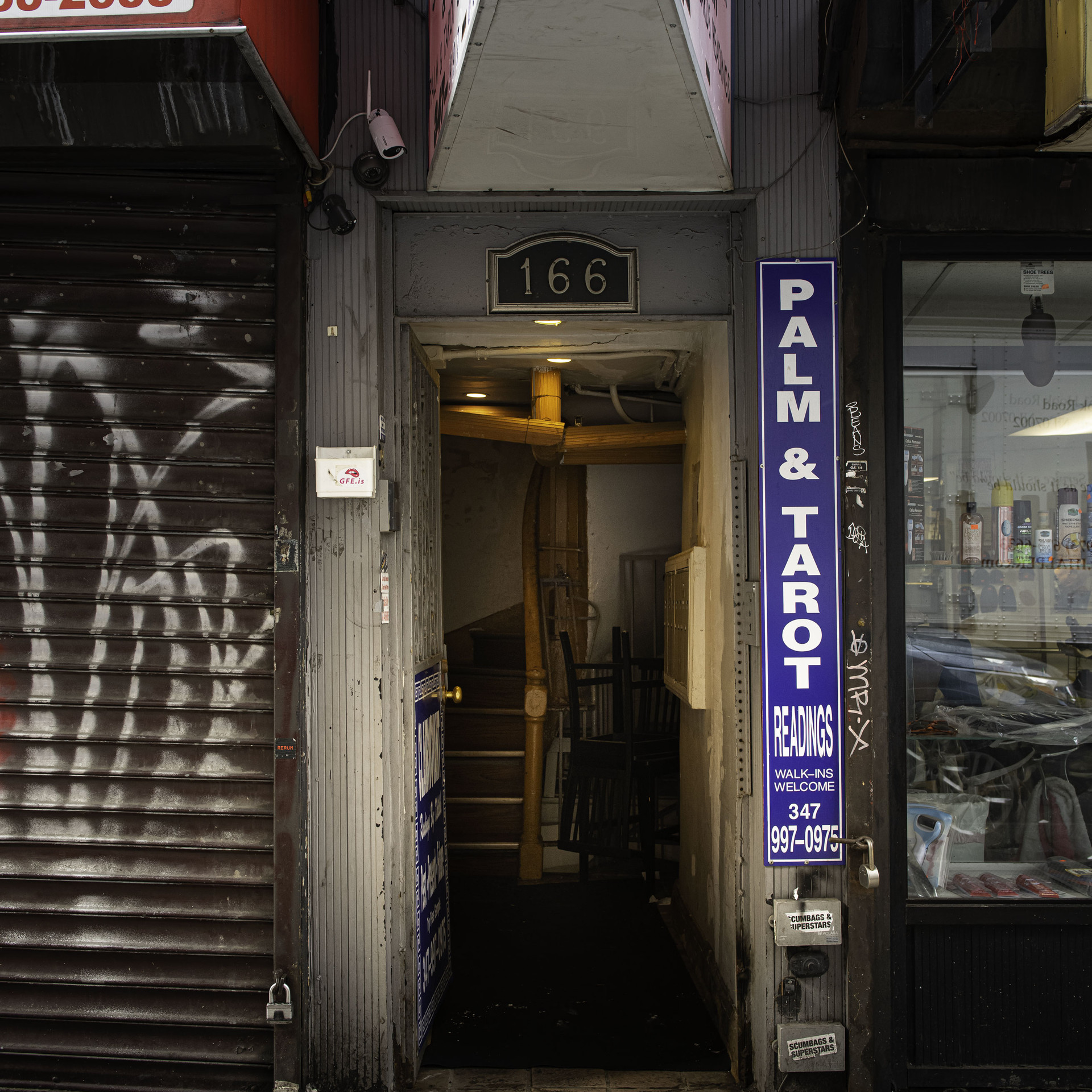 PALM AND TAROT New York Intimate Limited Edition Photography