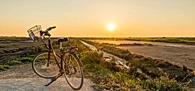 tour-de-l'ile-de-ré-en-vélo---voyage-e