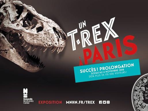 Rencontre avec un T-Rex à Paris
