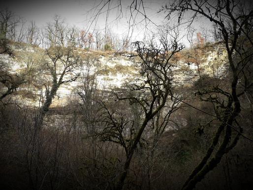 🌳📖📷 Les gouffres de la Braconne, (Charente)